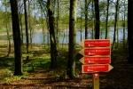 Naturstigar i Åkulla bokskogar